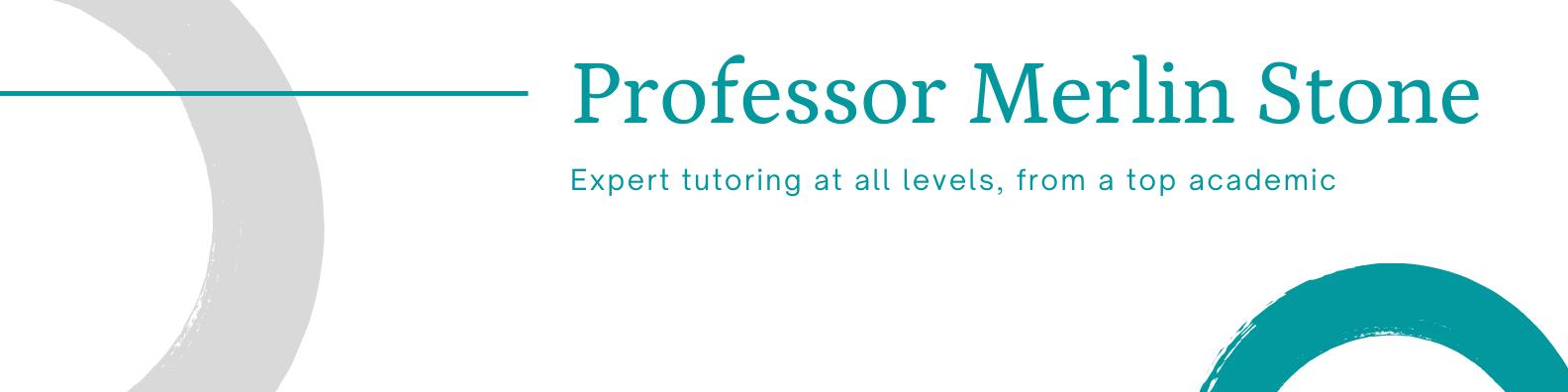 Professor Merlin Stone - Expert tutor